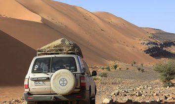 Oasis-dunes
