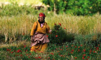 Villages berbères Toubkal